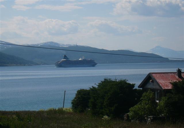 fischschwärme im fjord
